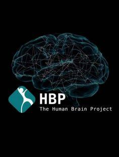 La CE aprueba el proyecto para la simulación del cerebro humano, que cuenta con la participación del BSC-CNS.  Las cálculos a nivel molecular se realizarán en MareNostrum y los investigadores del centro colaborarán en el desarrollo de modelos de programación.  Human Brain Project es uno de los dos proyectos Flagship que contarán con financiación especial de la Unión Europea.