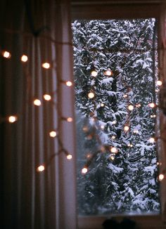 christmas lights and snow
