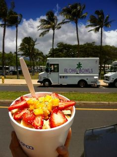 Aloha in a Bowl (by David C.): This is an acai bowl from a great food truck called Aloha Bowls. One of the food trucks at Takaako Tuesdays in Kakaako (Honolulu).
