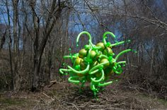Float, Balloon Sculptures by Janice Lee Kelly Lee Kelly, Janice Lee, Floating Balloons, Sculptures, Plants, Art, Art Background, Kunst, Plant