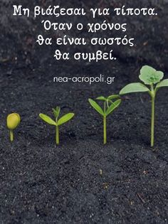 Greek Quotes, True Words, Life Images, Picture Video, Favorite Quotes, Beautiful Pictures, Inspirational Quotes, Herbs, Wisdom