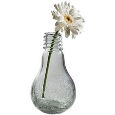 Dot & Bo Voltage Vase ($28) ❤ liked on Polyvore featuring home, home decor, vases, fillers, flowers and decor