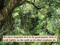 The farther we get away from living in harmony with the earth, the worse our lives will be.