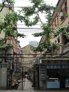 Shanghai, China  #shanghai  #china