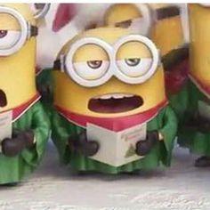 Minions in the choir. Minions 2014, Minions Bob, Minions Cartoon, Despicable Minions, Cute Minions, Minions Quotes, Minion Pictures, Funny Pictures, Minion Characters