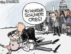 Presumptuous Politics: Democrat Meltdown Cartoons