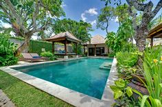 garden bed next to swimming pool - Google Search