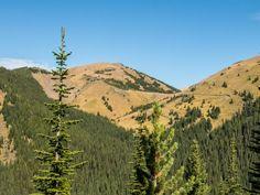 Mist Ridge Kananaskis