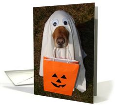 Happy Halloween, Did Someone Say Treats?... | Greeting Card Universe by Lisa Crisafi