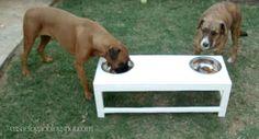 Casa e Fogão: Comedouro para cães (meu esposo que fez!)