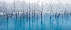 Kent Shiraishi Member Profile -- National Geographic Your Shot