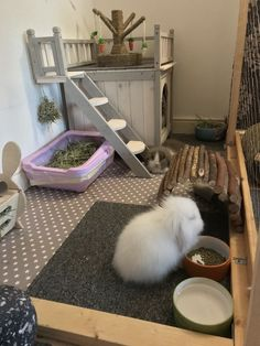Indoor bunnies new homeYou can find House rabbit and more on our website.Indoor bunnies new home Diy Bunny Cage, Diy Guinea Pig Cage, Bunny Cages, Guinea Pigs, Rabbit Cage Diy, Diy Bunny Hutch, Indoor Rabbit House, House Rabbit, Rabbit Hutch Indoor