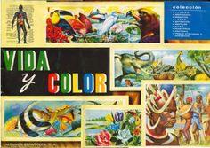 """ÀLBUMS DE CROMOS """"Vida y Color"""""""