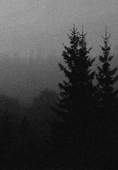 Night Aesthetic, Goth Aesthetic, Architecture Artists, Dark Landscape, Slytherin Aesthetic, Deep Forest, Dark Elf, Backrounds, Picture Wall