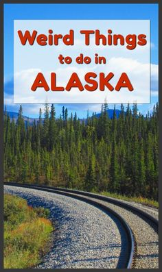 Wild and Weird Things to do when traveling in Alaska, USA