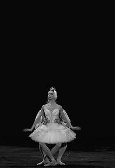 """<<Svetlana Zakharova in """"Swan Lake"""">>"""