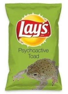 Weird Oreo Flavors, Lays Chips Flavors, Pop Tart Flavors, Lays Potato Chip Flavors, Hot Pockets, Weird Food, Food Humor, Potato Chips, Junk Food