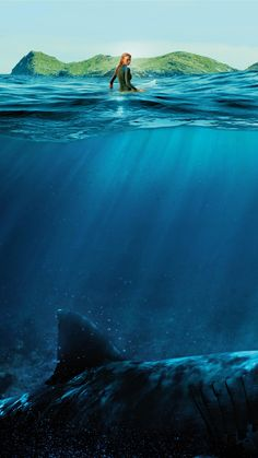 phone wall paper travel The Shallows Phone Wallpaper The Shallows Movie, Movie Wallpapers, Horror Movies, Haha, Sci Fi, Waves, Fan Art, Actors, Mountains