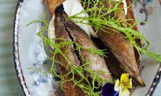 Warm, spiced mackerel toasts. Photograph: Jonathan Lovekin for Observer Food Monthly