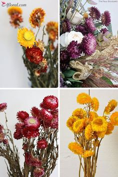 Dried Strawflowers m