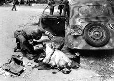 A U.S. Army medic gives first aid to an enemy Oberleutnant of the German Luftwaffe who was wounded by gunfire in his car. Chartres, Eure-et-Loir, France. August 1944.