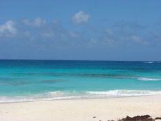 Guana Cay, Abacos