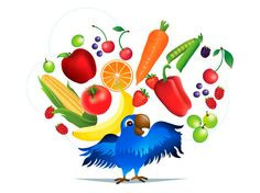 How to get your picky eaters to eat more fruits and vegetables! Kids need to eat 5 colors of the rainbow everyday! How close do your kids get?    #pickyeaters #kids #healthykids #healthyfood 100daysofrealfood.com AmberKeinath.com