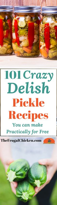 Crazy Delicious Pickle Recipes You Can Make Practically For Free Pickles are super healthy for your gut & immune system, and luckily, they're also super yummy AND FRUGAL! Here's 101 pickles that even your kids will love! Canning Tips, Canning Recipes, Canning Pickles, Fermented Foods, Ketchup, Immune System, Kids Meals, Delish, Food And Drink