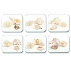 """Jason Shells Coasters - Set of 6 by Jason. $15.95. Gift Boxed. Hardboard, Cork backed. Heat resistant to 225ºF. Size: 4.5"""" x 3.75"""". Durable, heat sealed surface. Attractive top quality placemats by Jason of New Zealand. The hardboard and cork is sourced from renewable resources. The edges are heat sealed, the surface is smooth and the cork backing will protect your table. Just wipe clean with a damp cloth."""