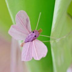 On craque pour ces petits papillons en plumes montés sur une mini pince en bois.Ils se pincent partout: au bord d'un verre, d'une serviette, sur un contenant à dragées ou un centre de table...