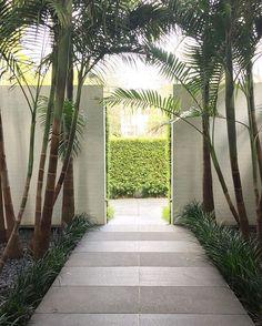 Same stone, different finish. flanked by palms & large@ creates Garden Entrance, House Entrance, Garden Gates, Bamboo Hedge, Landscape Design, Garden Design, Melbourne Garden, Granite Paving, Wall Design