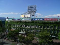 If you like the ivy at Wrigley Field, check out Koshien Stadium in Japan. Home of the Hanshin Tigers. Hanshin Tigers, Wrigley Field, Raider Nation, Japan, Awesome, Places, Travel, Dallas Cowboys, Yards
