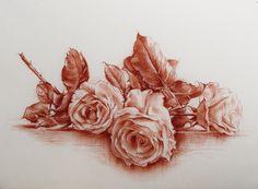 """""""Tre rose""""Sanguigna su carta"""