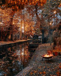 Autumn Scenes, Autumn Cozy, Happy Autumn, Autumn Fall, Autumn Aesthetic, Fall Wallpaper, Autumn Photography, Scenery Photography, Best Seasons