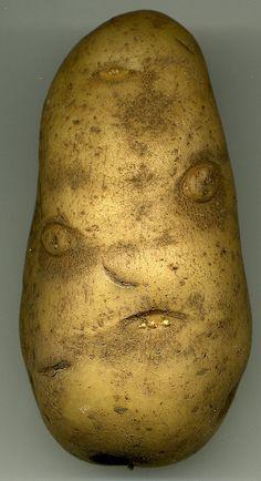 "Mr Potato head....looks like ""Sloth"" from the movie Goonies!!!"