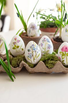 I'm always able to find beauty in each season but this year, I'm specially loving Easter Egg Crafts, Easter Projects, Painted Eggs Easter, Easter Egg Designs, Egg Decorating, Decorating Easter Eggs, Easter Activities, Egg Art, Easter Celebration