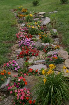83 gorgeous front yard rock garden landscaping ideas 70 magical side yard and backyard gravel garden design ideas Driveway Landscaping, Landscaping With Rocks, Landscaping Ideas, Backyard Ideas, Modern Backyard, Landscaping Software, Desert Backyard, Residential Landscaping, Sloped Backyard