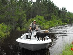 FWC Officer in a Baker County rescue after Tropical Storm Debby separated a family from their dogs.