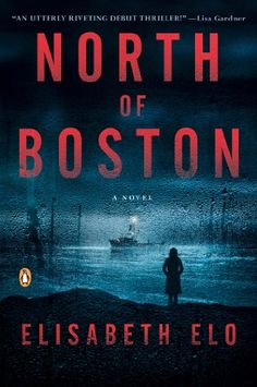 North of Boston: A Novel by Elisabeth Elo http://www.amazon.com/dp/0143126121/ref=cm_sw_r_pi_dp_2bbFwb1NB9P2B