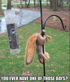 When you think you've had a bad day...