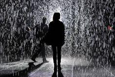 Where stories live Confused, Rain, Wattpad, Concert, Beautiful, Snacks, Rain Fall, Appetizers, Concerts
