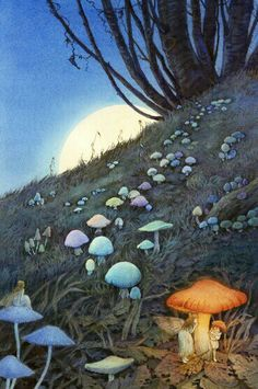 Enchanted forest… mushroom and fairies illustration Art And Illustration, Food Illustrations, Fantasy World, Fantasy Art, Fantasy Paintings, Deco Pirate, Mushroom Art, Photo D Art, Alphonse Mucha