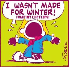 20 Funny Winter Images To Help Get Over Your Winter Blues funny winter jokes funny quotes humor winter quotes winter images funny pics fun quotes funny images viral funny winter quotes viral right now fun pics jokes and fun viral daily funny winter images No Kidding, Me Quotes, Funny Quotes, Funny Winter Quotes, Snow Quotes, Summer Quotes, Funny Phrases, Winter Qoutes, Winter Sayings