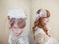beautiful birdcage veil