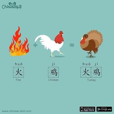 "In Chinese a Turkey is a ""Fire Chicken. Chinese Phrases, Japanese Phrases, Chinese Symbols, Chinese Lessons, French Lessons, Spanish Lessons, Teaching Spanish, Teaching French, Spanish Activities"