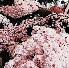flowers image on We Heart It