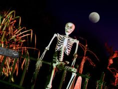 Tampa Bay's Most HauntedPlaces