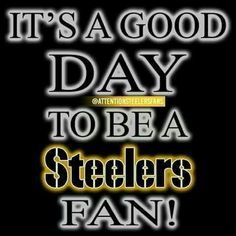 91 Best Steelers Fans Images Pittsburgh Steelers Steelers Fans