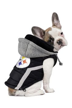 Pittsburgh Steelers Dog Puffer Vest by Hip Doggie on @HauteLook