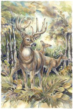 Bergsma Gallery Press::Paintings::